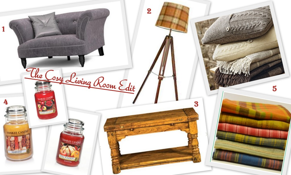 Cosy Living Room Edit