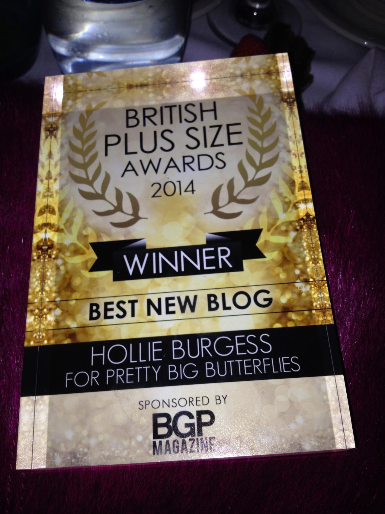 Plus Size Awards - Best New blog Winner