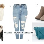 Autumn Style Plus Size Fashion Wish List