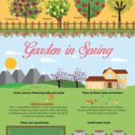 How Your Garden Transforms Through the Seasons