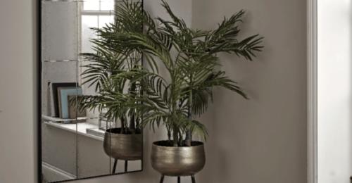 6 Stylish Ways to Decorate Empty Corners